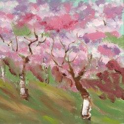 Freestone Spring
