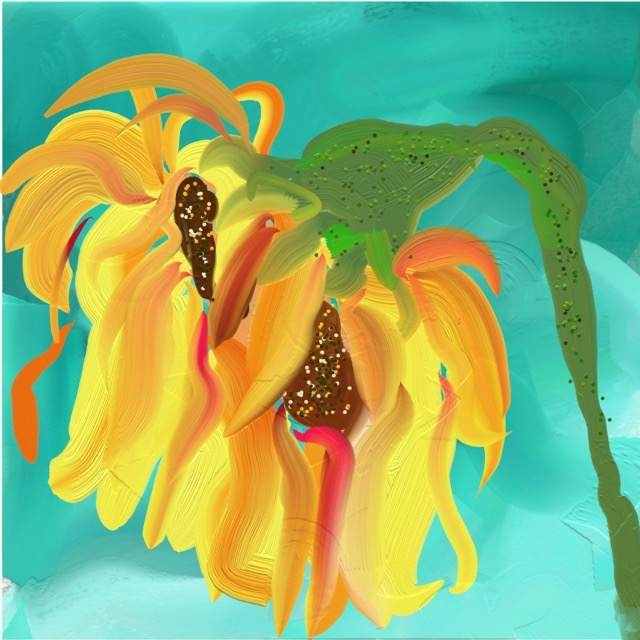 Sunflower by Barbara Harvie (digital)